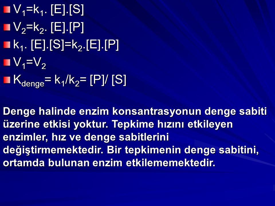 V1=k1. [E].[S] V2=k2. [E].[P] k1. [E].[S]=k2.[E].[P] V1=V2